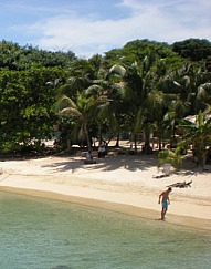 Roatan Secluded Beach