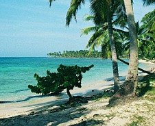 Dominican Republic Sandy Beach
